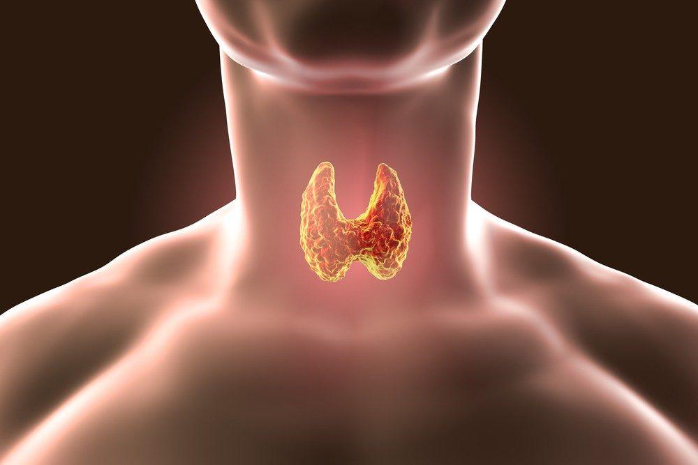 معلومات شاملة عن أعراض الغدة الدرقية وعلاجها